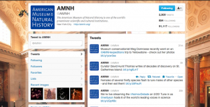 A screenshot of the @AMNH twitter page. I love their background!
